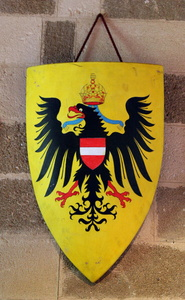 Black Eagle Shield