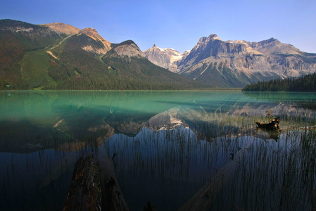 Emerald Lake Reflection #2