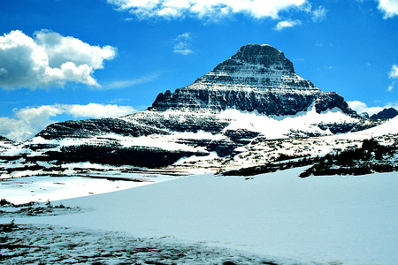Mt. Reynolds from Logan Pass