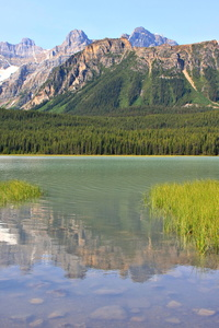 Waterfowl Lake #2