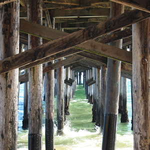 Ribs of the Pier