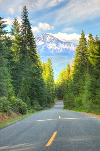 Road to Mt. Shasta