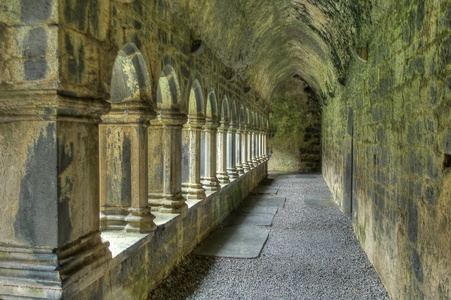 Quin Abbey Cloister