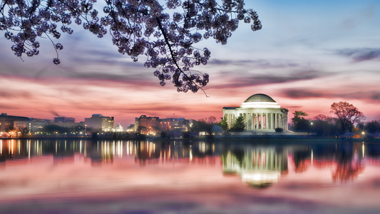Dawn Over the Tidal Basin