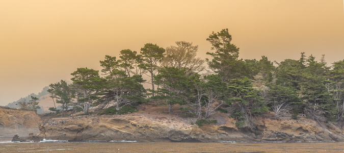 Smoky Shoreline