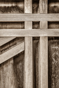 Detail of a Door #1