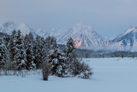 Sunrise at Oxbow Bend #1