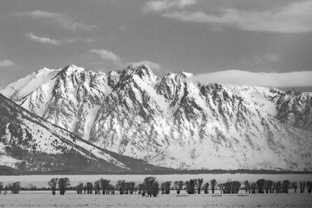 Jackson Hole in Black and White #1