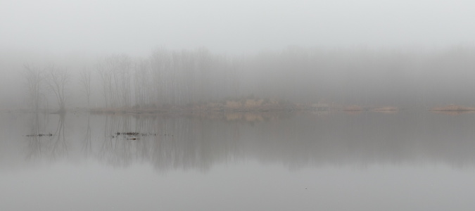 Foggy Morning #2