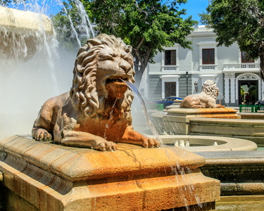 Lion Fountain #5