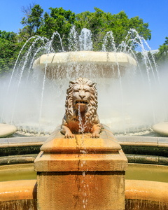 Lion Fountain #3