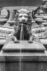 Lion Fountain #2