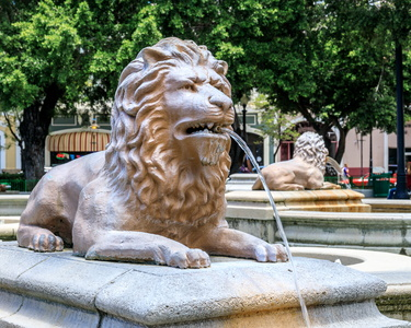 Lion Fountain #1