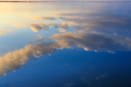 Lake Mattamuskeet Reflection #7