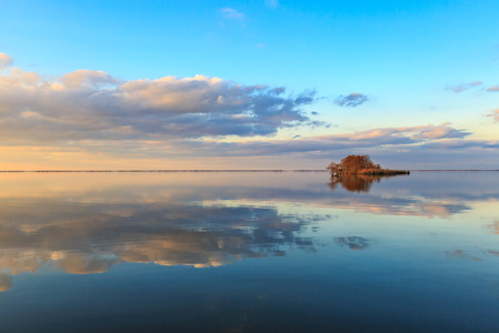 Lake Mattamuskeet Reflection #3