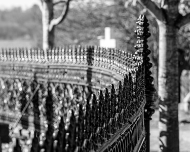 Fence Detail #3