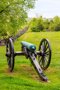 Cannon & Fence