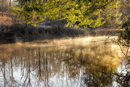 Fog on the Blackwater River